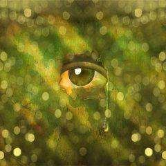 מה מאפיין הפרעת אישיות סכיזואידית ואיך תטפלו בה?